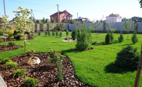 Проект Новоалександровка