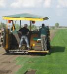 Укладка газонов, автоматический полив