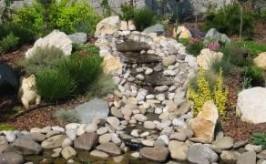 Декоративный водоём и растения, розарий