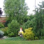 Комплексное благоустройство и озеленение